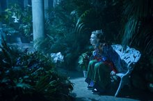 Alice Through the Looking Glass Photo 15