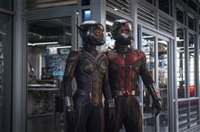Ant-Man and The Wasp Photo 5