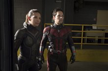 Ant-Man and The Wasp Photo 8