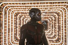 Ant-Man and The Wasp Photo 24