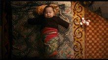 Babies Photo 1
