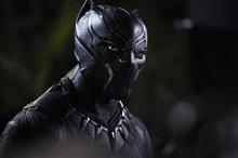 Black Panther Photo 1
