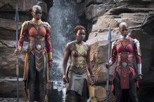 Black Panther Photo 7
