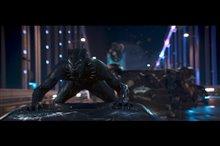 Black Panther Photo 8