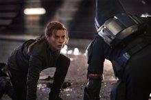Black Widow Photo 7