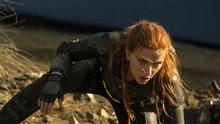 Black Widow Photo 9