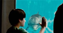 Dolphin Tale Photo 4