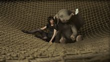 Dumbo Photo 14