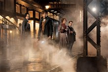 Fantastic Beasts and Where to Find Them Photo 1