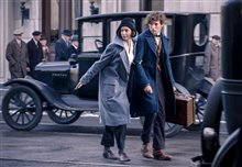 Fantastic Beasts and Where to Find Them Photo 3