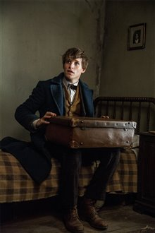 Fantastic Beasts and Where to Find Them Photo 61