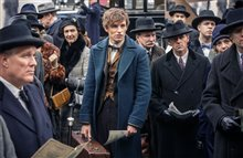 Fantastic Beasts and Where to Find Them Photo 7