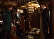 Fantastic Beasts and Where to Find Them Photo 15