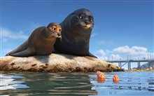 Finding Dory Photo 17