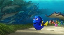 Finding Dory Photo 21
