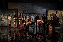 Flamenco, Flamenco Photo 5