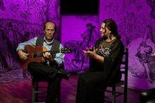 Flamenco, Flamenco Photo 17