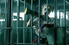 Harley Quinn: Birds of Prey Photo 14