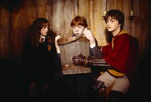 Harry Potter and the Chamber of Secrets Photo 26