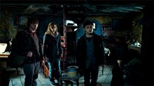 Harry Potter and the Deathly Hallows: Part 1 Photo 6