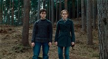 Harry Potter and the Deathly Hallows: Part 1 Photo 16