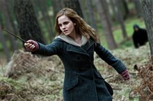 Harry Potter and the Deathly Hallows: Part 1 Photo 39