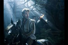 Into the Woods Photo 7