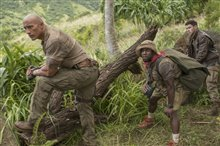 Jumanji: Welcome to the Jungle Photo 6