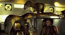 Jurassic Park Photo 4 - Large