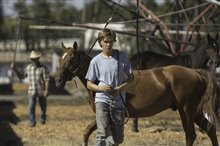 Lean on Pete Photo 5