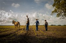 Mudbound (Netflix) Photo 5