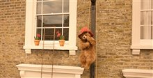 Paddington 2 Photo 1