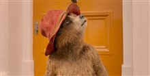 Paddington 2 Photo 5