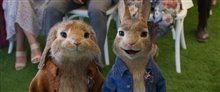 Peter Rabbit 2: The Runaway Photo 8