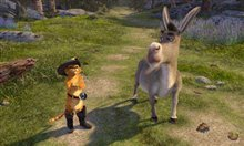 Shrek 2 Photo 3
