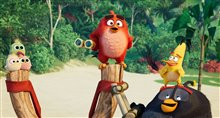 The Angry Birds Movie 2 Photo 30