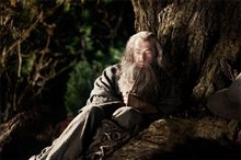 The Hobbit: An Unexpected Journey Photo 3