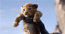 The Lion King Photo 3