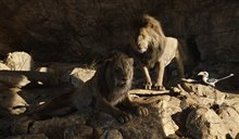 The Lion King Photo 21