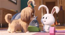 The Secret Life of Pets 2 Photo 1