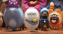 The Secret Life of Pets 2 Photo 9