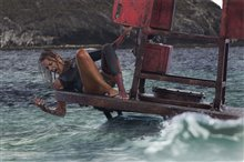 The Shallows Photo 3