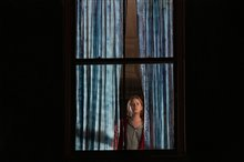 The Woman in the Window (Netflix) Photo 2