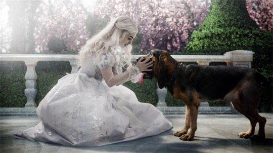 Alice in Wonderland Photo 2 - Large