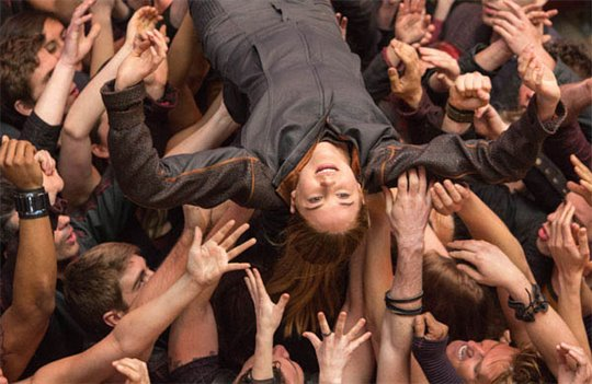 Divergent Photo 7 - Large