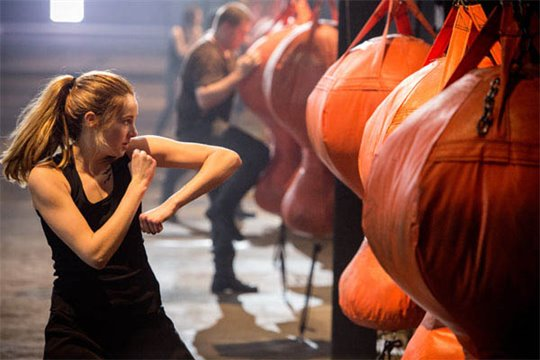 Divergent Photo 10 - Large