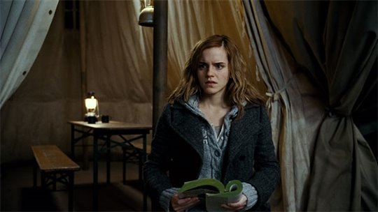 Harry Potter and the Deathly Hallows: Part 1 Photo 41 - Large