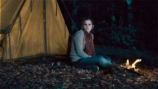 Harry Potter and the Deathly Hallows: Part 1 Photo 43 - Large