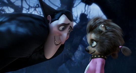 Hotel Transylvania Photo 22 - Large