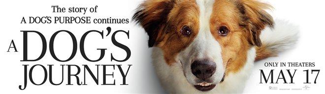 A Dog's Journey Photo 1 - Large